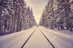 Год сбора винограда тонизировал железнодорожные пути в лесе зимы Стоковое фото RF