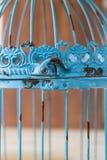 Год сбора винограда Birdcage стоковое фото