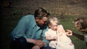 (год сбора винограда 8mm) пикник фермы мамы 1952 & младенца папы, цыплята в предпосылке Айова, США видеоматериал