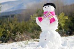 год снежка человека новый s рождества карточки предпосылки Стоковые Фото