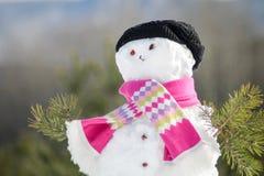 год снежка человека новый s рождества карточки предпосылки Стоковое Изображение