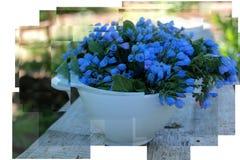 голубая ваза цветков Стоковые Фото