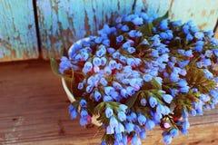 голубая ваза цветков Стоковое Изображение RF