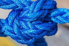Голубая веревочка плавания связанная с узлами Стоковая Фотография RF