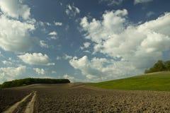 голубая весна неба зеленого цвета травы поля Стоковое Изображение RF