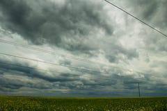 голубая весна неба зеленого цвета травы поля Стоковая Фотография RF