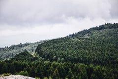 голубая зига гор Стоковое Изображение