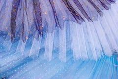 Голубая и белая предпосылка балетной пачки Стоковые Изображения RF