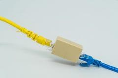 Голубая и желтая локальная сеть Cat5e привязывает наполнитель o кабеля штепсельной вилки RJ45 Стоковые Фото