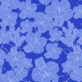 голубая картина цветка безшовная безшовный вектор текстуры Стоковые Фото