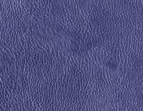 голубая кожаная текстура Стоковые Изображения