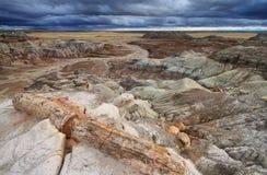 Голубая меза, окаменелый национальный парк леса, стоковое изображение
