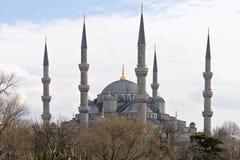 Голубая мечеть в Стамбуле, Турции Стоковые Изображения