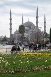 Голубая мечеть в Стамбуле, Турции Стоковая Фотография RF