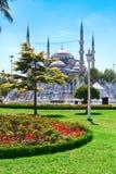 Голубая мечеть стоковые изображения rf