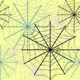 голубая мягкая сеть подкраской спайдера Стоковые Изображения