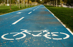 Голубая дорога велосипеда в парке Стоковая Фотография
