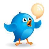 Голубая птица Стоковое Фото