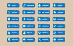 голубая сеть кнопки Стоковое Изображение RF