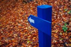 Голубая стрелка дорожного знака в лесе осени Стоковая Фотография