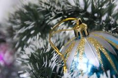 голубая тень орнамента иллюстрации цветка рождества Стоковое Изображение RF