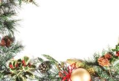 голубая тень орнамента иллюстрации цветка рождества Стоковые Изображения