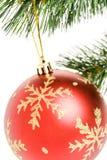 голубая тень орнамента иллюстрации цветка рождества Стоковое фото RF