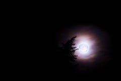 голубая луна Стоковые Фото
