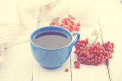 Голубая чашка терапевтического травяного чая с ягодой рябины на белом деревенском деревянном столе альтернативный bamboo поднос с Стоковое Фото