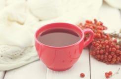 Голубая чашка терапевтического травяного чая с ягодой рябины на белом деревенском деревянном столе альтернативный bamboo поднос с Стоковые Изображения RF