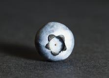 Голубика Стоковые Фотографии RF