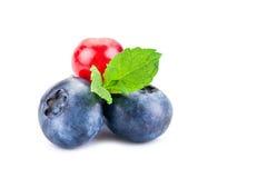Голубики и красная смородина Свежие ягоды при листья изолированные на белой предпосылке Стоковые Изображения RF