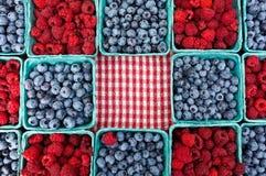 Голубики и Rasberries на рынке фермеров Стоковые Фотографии RF