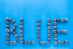 Голубики на красочной голубой предпосылке при письма говоря bl по буквам Стоковые Изображения RF