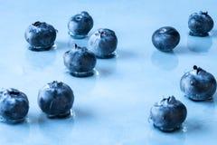 Голубики Стоковое фото RF