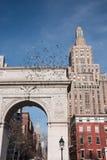 Голуби летая над сводом в квадрате Вашингтона паркуют с Эмпайром Стейтом Билдингом на заднем плане стоковые изображения rf