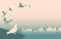Голуби на крыше Стоковая Фотография