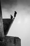 Голуби на памятнике Стоковые Фотографии RF