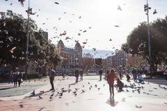 Голуби людей подавая в квадрате Каталонии Стоковая Фотография RF