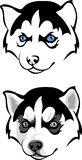 Голубоглазый осиплый щенок иллюстрация вектора