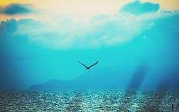 голубое глубокое Стоковые Изображения