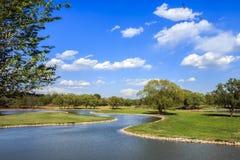 голубое лето неба пейзажа зеленого цвета поля Стоковое Фото