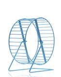 Голубое колесо хомяка Стоковая Фотография RF