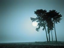 Голубое настроение Стоковое Фото