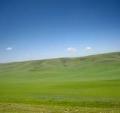 голубое небо ландшафта зеленого цвета травы стоковая фотография rf