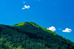 Голубое небо, белые облака, зеленые горы Altai в полдень Стоковая Фотография