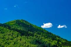 Голубое небо, белые облака, зеленые горы Altai в полдень стоковое фото
