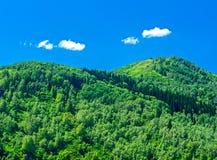 Голубое небо, белые облака, зеленые горы Altai в полдень Стоковое Изображение RF