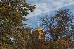 Голубое небо заволакивает крест ветвей Стоковое Изображение RF