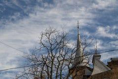 Голубое небо заволакивает крыша ветви Стоковые Фотографии RF